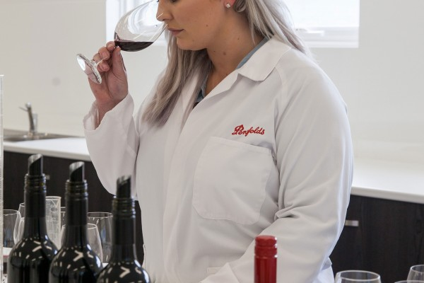 ProvenanceBarossa Penfolds 20 Cropped